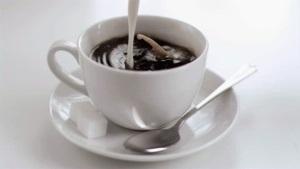コーヒーレディエロサービス
